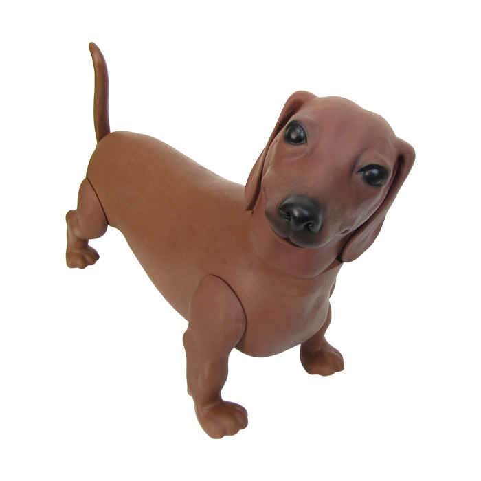 Cachorro para pet shop Dachshund